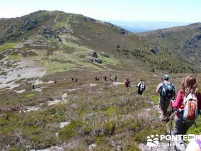 Senderismo Segovia - Macizo de la Buitrera; caminatas sierra madrid